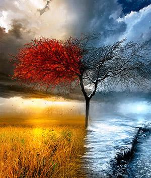 Four-Seasons-art_-1