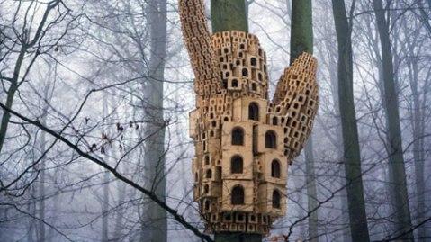 birdhouse rome