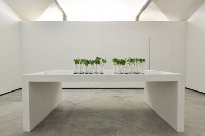 florenece experiment lab